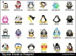 Penguins (new)