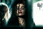 bellatrix lestrange centre hp7 6x4