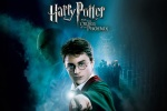 harry potter lord voldemort hp6 dvd 6x4