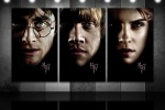harry potter ron weasley hermione granger hp7 portraits 6x4