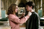 hermione granger harry potter hp2 medallion 6x4