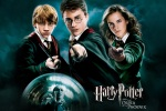 ron weasley harry potter hermione granger hp6 dvd 6x4