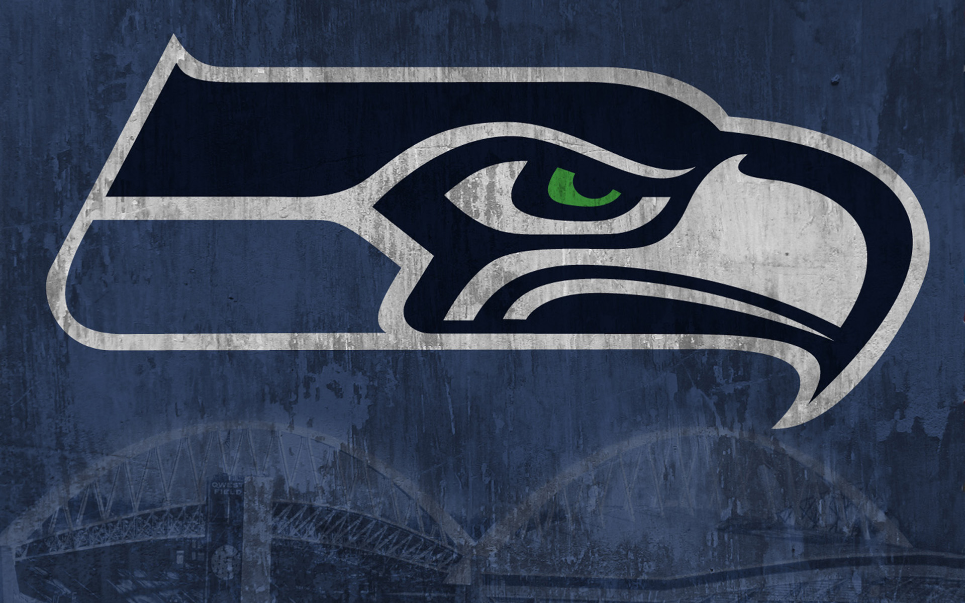 Seattle seahawks rough 19201200 digital citizen seattle seahawks rough 19201200 biocorpaavc Image collections