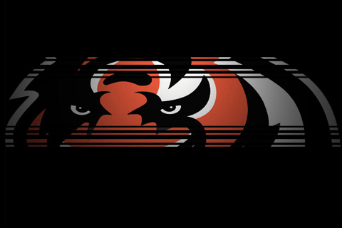 cincinnati bengals wallpaper. Cincinnati Bengals. Share this!