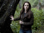 bella swan woods 1280x960