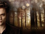 edward cullen shiny spots woods 1280x960