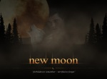 new moon poster jacob black wolf pale 1280x960