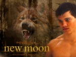new moon poster jacob wolf 1280x960