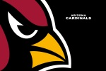 Arizona Cardinals 6x4