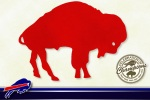Buffalo Bills Wallpaper 2005