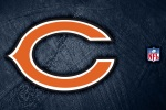 chicago bears shadow 6x4