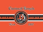 cincinnati bengals full orange 2560x1920