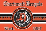 cincinnati bengals full orange 6x4