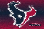 houston texans 3d 6x4
