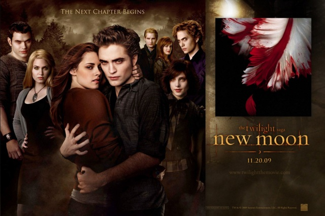 twilight new moon book report New moon book summary & chapter summaries of new moon novel  (catch up  on all the juicy details of twilight in our full discussion on shmoop) bella is still.