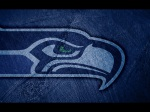 seattle seahawks shadow 2560x1920