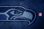 seattle seahawks shadow 6x4