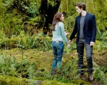 bella swan edward cullen jacob black woods 1280x1024