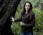 bella swan woods 1280x1024