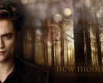 edward cullen shiny spots woods 1280x1024