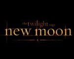 New Moon Logo 1280x1024