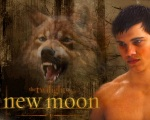 new moon poster jacob wolf 1280x1024
