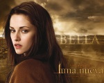 spanish bella swan 1280x1024