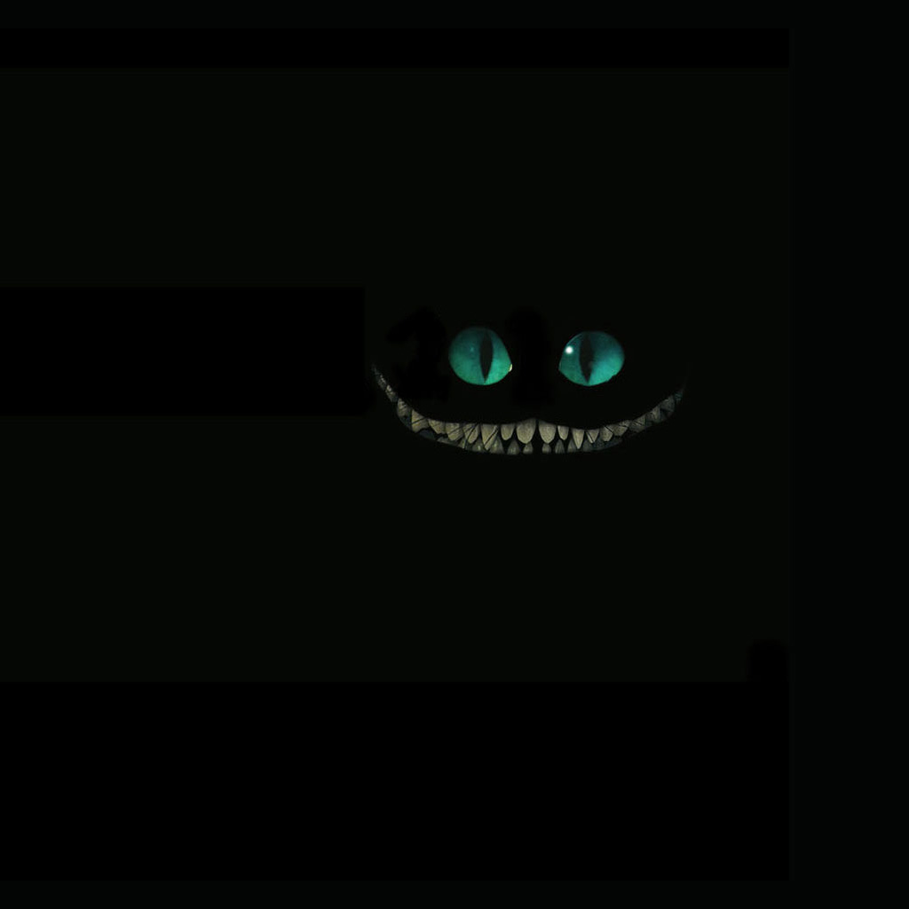Cheshire Cat Invisible IPad Wallpaper 1024x1024