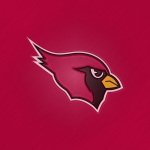 Arizona Cardinals (embossed steel)