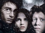 Harry Potter / Hermione Granger / Ron Weasley