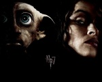 double bellatrix lestrange dobby hp7 1280x1024