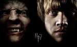 double fenrir greyback ron weasley hp7 2560x1600