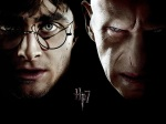 Double: Harry Potter / Lord Voldemort