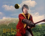 harry potter hp1 quidditch 1024x768