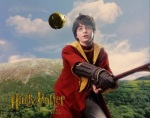 harry potter hp1 quidditch 1280x960