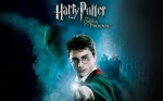 harry-potter-lord-voldemort-hp6-dvd