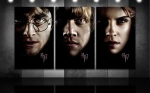 harry-potter-ron-weasley-hermione-granger-hp7-portraits