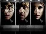 Harry Potter / Ron Weasley / Hermione Granger