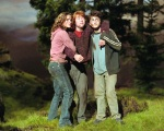 Hermione Granger Harry Potter Ron Weasley Bloodied 1280x1024