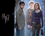 Harry Potter ron weasley hermione granger hp7