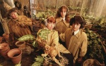 Ron Weasley Hermione Granger Harry Potter hp2 earmuffs 2560x1600