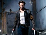wolverine walking 3460x5190