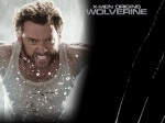 wolverine water claws 1024x768