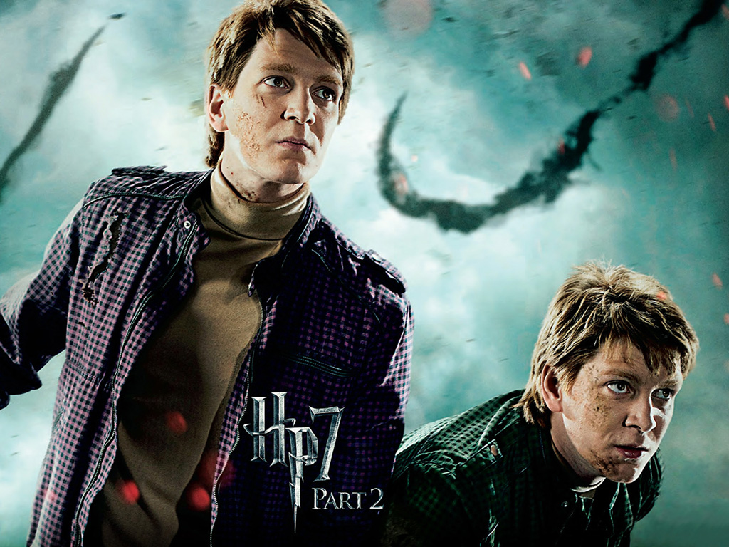 Harry Potter 7, The Deathly Hallows Part 2 Widescreen