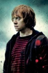 Ron Weasley It All Ends iphone4 960x640