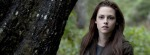bella swan woods Facebook Timeline Cover