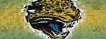 jacksonville jaguars 3d facebook timeline cover