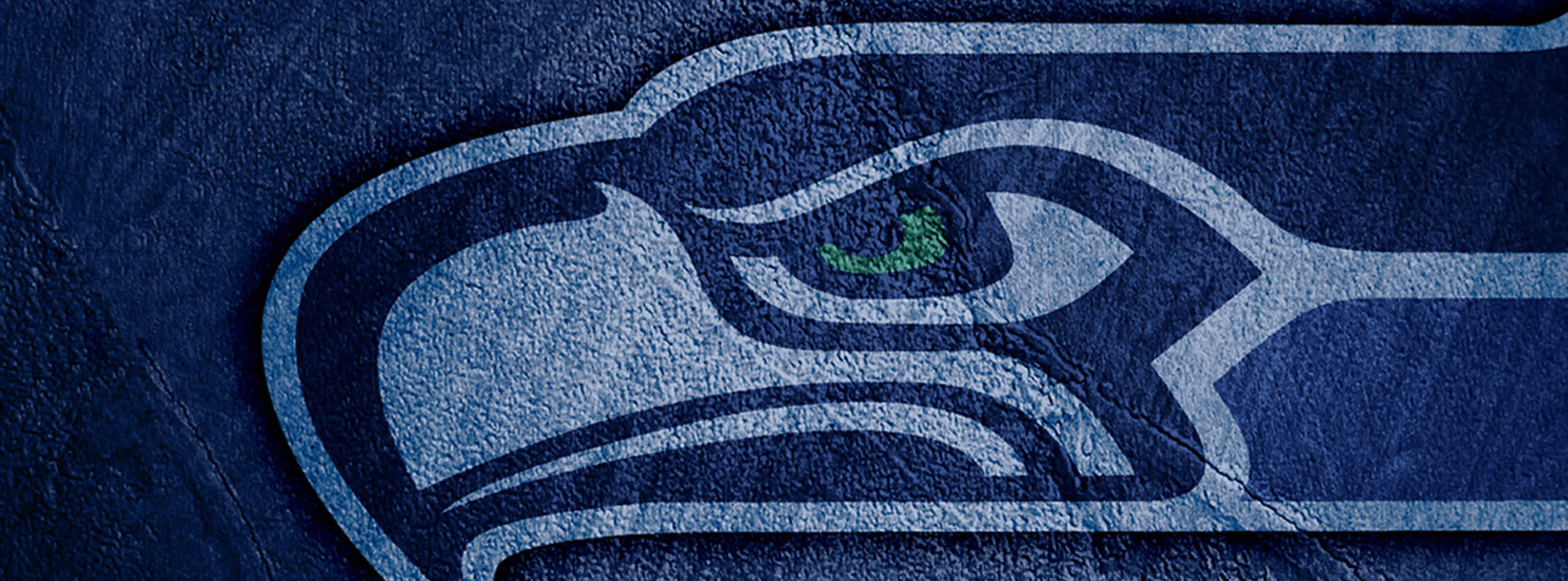 https://idigitalcitizen.files.wordpress.com/2012/03/seattle-seahawks-shadow-facebook-timeline-cover1.jpg