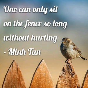 Fence Sitting Quote Digital Citizen